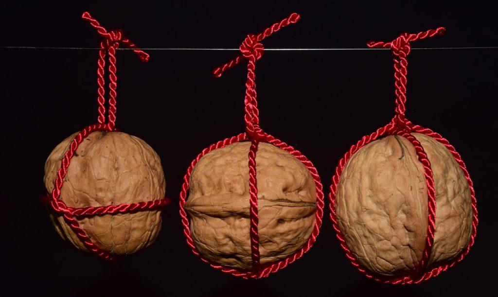 orzechy włoskie w przepisie na orzechowy odrywaniec