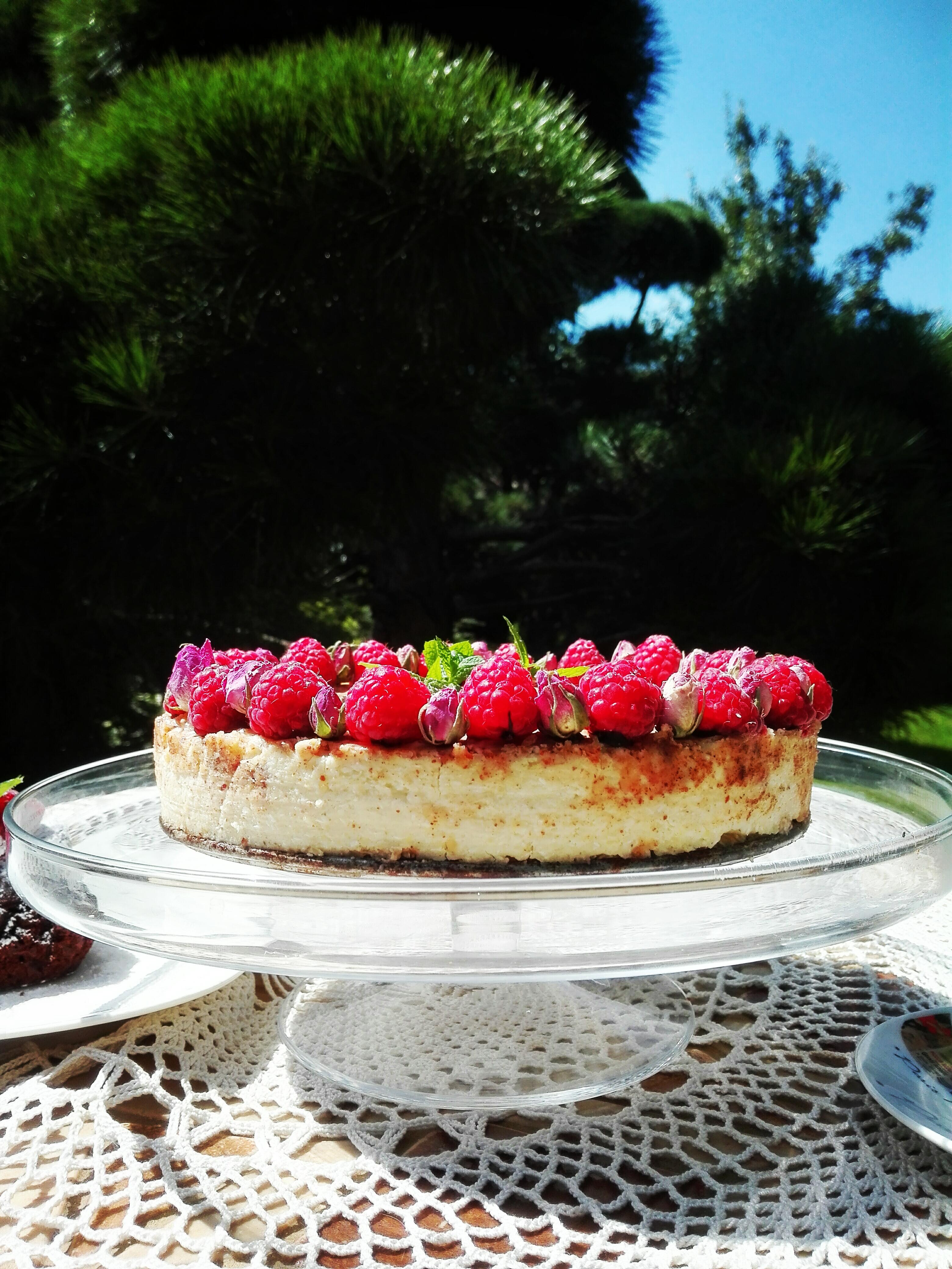 Ciasto jaglane z masłem kokosowym i migdałowym PLANTA FOOD